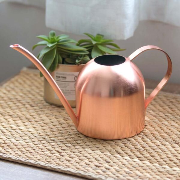 Long Mouth Water Can Stainless Steel Watering Pot Garden Flower Plants Watering Cans 500ML /1000ML Kettle Gardening Tool 1
