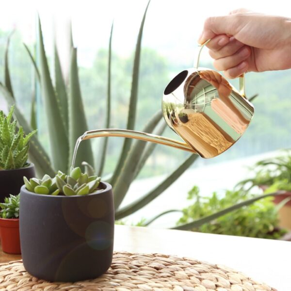 Long Mouth Water Can Stainless Steel Watering Pot Garden Flower Plants Watering Cans 500ML /1000ML Kettle Gardening Tool 4