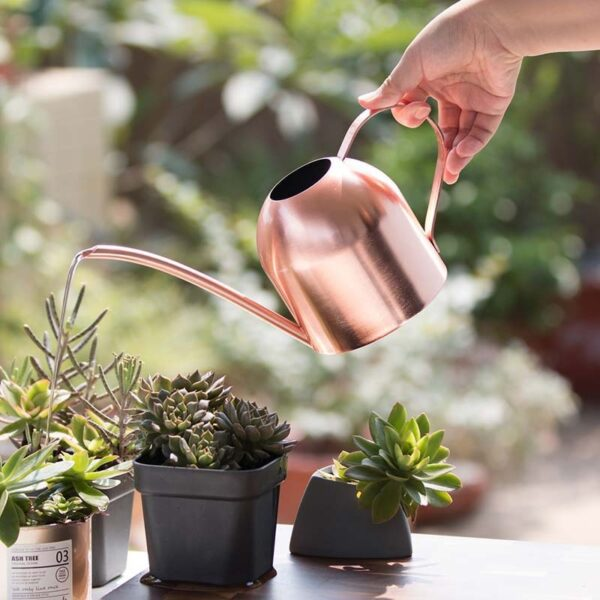 Long Mouth Water Can Stainless Steel Watering Pot Garden Flower Plants Watering Cans 500ML /1000ML Kettle Gardening Tool 2