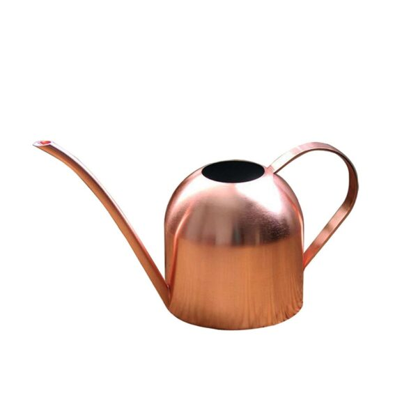 Long Mouth Water Can Stainless Steel Watering Pot Garden Flower Plants Watering Cans 500ML /1000ML Kettle Gardening Tool 5